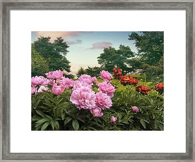 Hillside Peonies Framed Print by Jessica Jenney