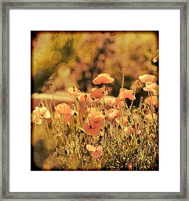Framed Print featuring the painting Hillside Poppies And Sunset by Douglas MooreZart