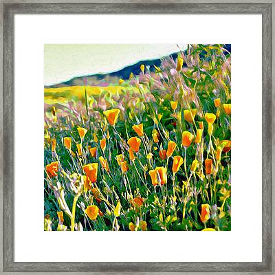 Hillside Poppies - Impressions Three Framed Print