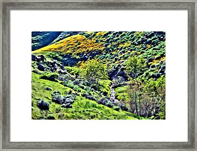Hillside Poppies - Impressions Two Framed Print
