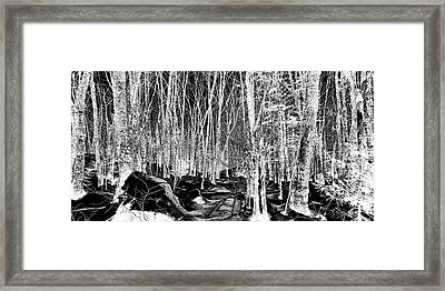 Hillside Shadows Framed Print