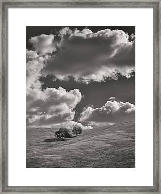 Hillside Trees Framed Print by Joseph Smith