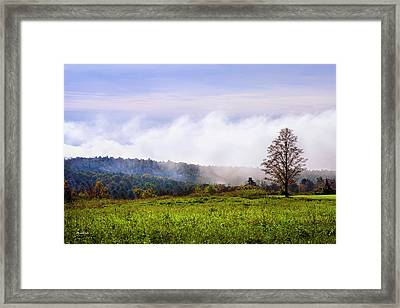 Hilltop Fog Sunrise Landscape Framed Print by Christina Rollo