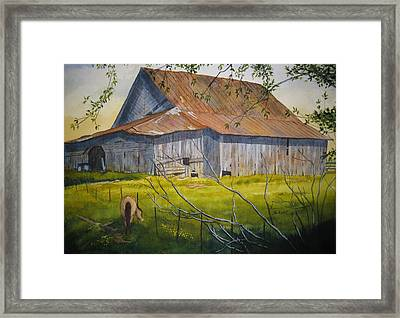 Hilltop Haven Framed Print