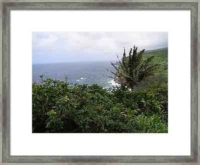 Hilo Coast Hawaii Framed Print by Don Phillips