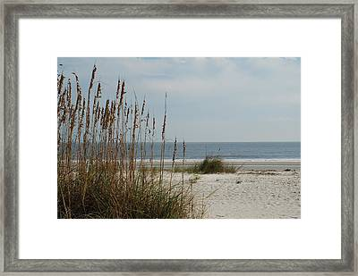 Hilton Head Beach Framed Print