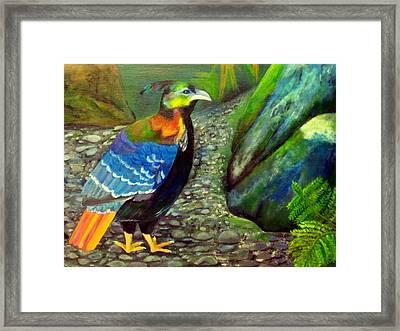 Himalayan Monal Pheasant Framed Print by Jennie Robin