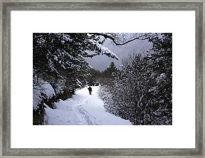Himalayan Trail Framed Print