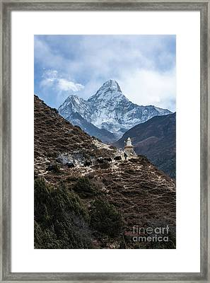 Framed Print featuring the photograph Himalayan Yak Train by Mike Reid