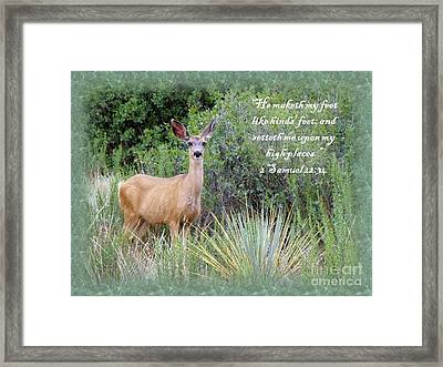 Hinds Feet On High Places Framed Print by Donna Parlow