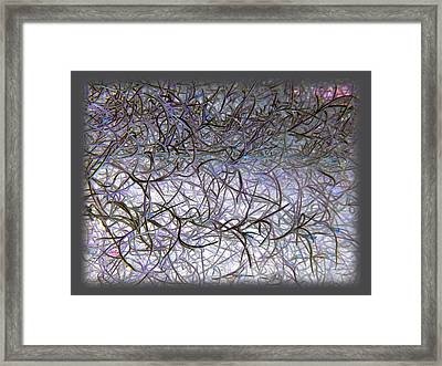 Hint Of Colour Framed Print