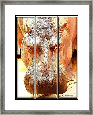 Hippo Cartoon Framed Print by Ericamaxine Price