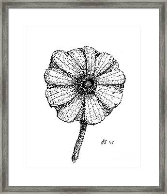 Hiroko's Daisy II Framed Print by Dale Arends