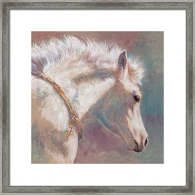 His Coat Reflects The Sky Framed Print by Tracie Thompson