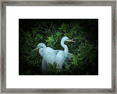 His Veil Over Hers Framed Print