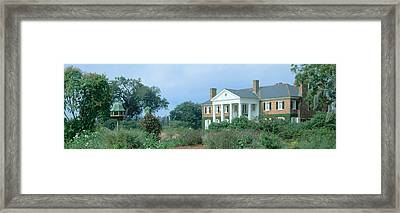 Historic Boone Hall Cotton Plantation Framed Print