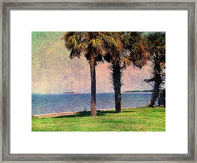 Historic Fort Sumter Charleston Sc Framed Print by Susanne Van Hulst