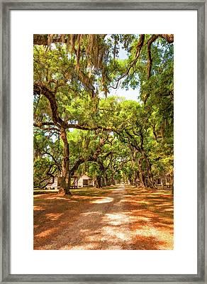 Historic Lane 2 Framed Print