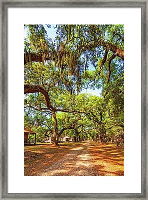 Historic Lane 3 Framed Print