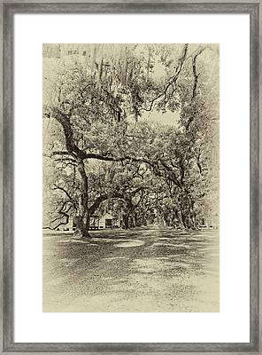 Historic Lane Antique Sepia Framed Print
