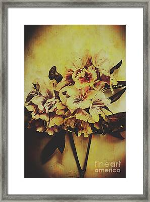 History In Bloom Framed Print