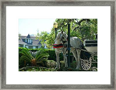 Hitched And Ready Framed Print by Bruce Gourley