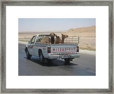 Hitching A Ride Framed Print by Nina  Kamp