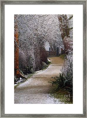 Hoar Frost On The Kanaka Creek Riverfront Trail Framed Print by Sharon Talson