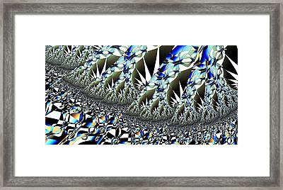 Hoar Frost Framed Print by Ron Bissett