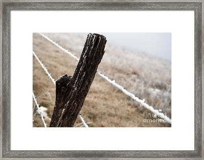 Hoarfrost And Fence Framed Print by Fred Lassmann