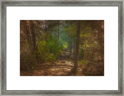 Hobbit Path Framed Print