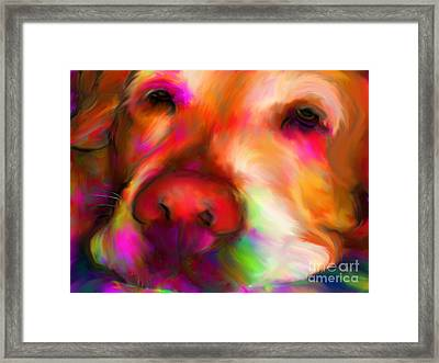 Hobie Framed Print by Suzanne Batchelor