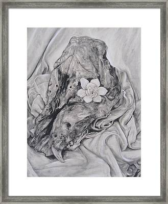 Hog Skull And Gardenia Framed Print by Adrienne Martino
