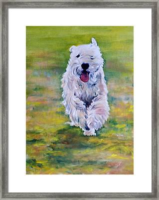 Hogan Framed Print by Kathy Harker-Fiander