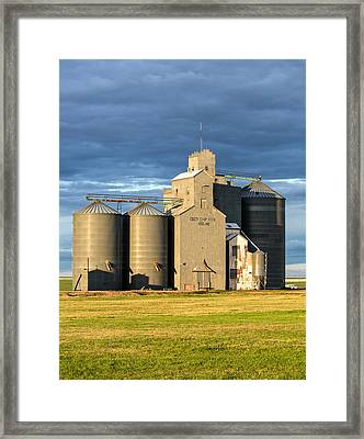Hogeland Grain Elevator Framed Print by Todd Klassy