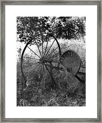 Hogeye Hayrake Framed Print by Curtis J Neeley Jr