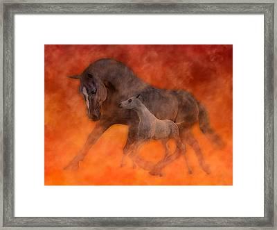 Hokie Horses Framed Print by Betsy Knapp