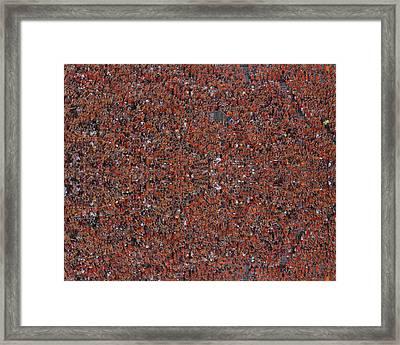 Hokie Pride Framed Print by Betsy Knapp
