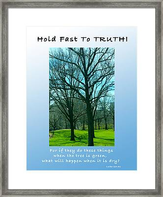 Hold Fast To Truth Framed Print by Terry Wallace