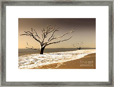 Framed Print featuring the photograph Hold The Line by Dana DiPasquale