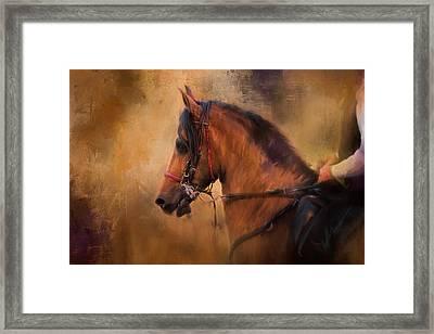 Hold Your Head High Horse Art Framed Print by Jai Johnson