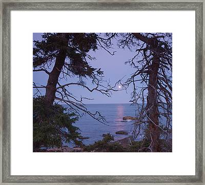 Holding On To The Moon Framed Print by Darylann Leonard Photography