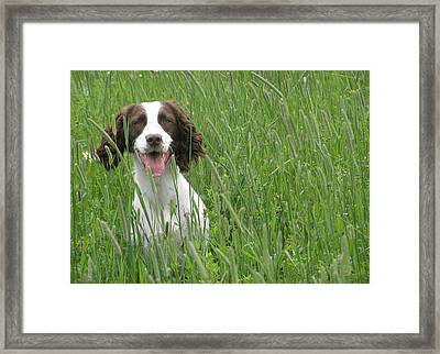 Framed Print featuring the photograph Holding Steady  by Angie Rea