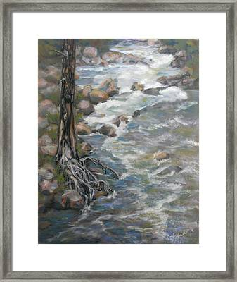Holding The Edge Framed Print by Carole Haslock