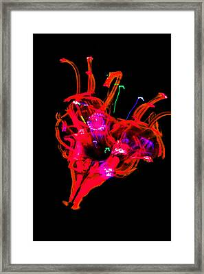 Hole In My Heart Framed Print
