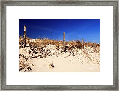 Framed Print featuring the photograph Holgate Beach Dune by John Rizzuto