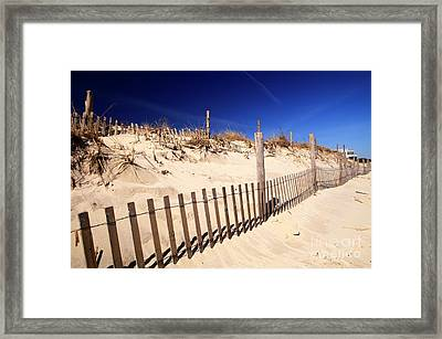 Framed Print featuring the photograph Holgate Dune Fence by John Rizzuto