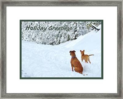 Holiday Greeters Framed Print by Wendy Rickwalt