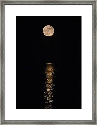 Holiday Magic - Lunar Art Framed Print