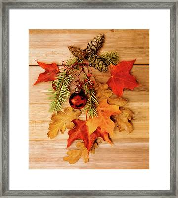 Framed Print featuring the photograph Holidays by Rebecca Cozart